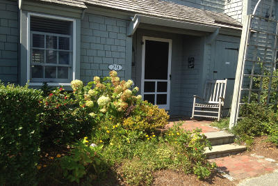 Mashpee Condo/Townhouse For Sale: 29 Hydrangea Lane