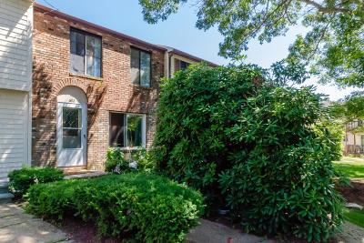 Bourne Condo/Townhouse For Sale: 602 Village Drive