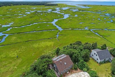 Chatham, Brewster, Orleans, Dennis, Harwich, Yarmouth, Eastham Single Family Home For Sale: 635 Herring Brook Road