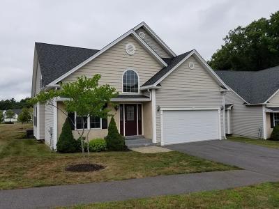 Ashland Condo/Townhouse For Sale: 23 Shadow Creek Ln #9