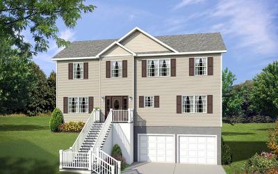 Single Family Home For Sale: 54 Dedham St