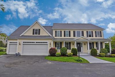 Wrentham Single Family Home For Sale: 95 Riverside Drive