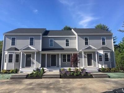 Hanson Condo/Townhouse For Sale: 50 Saw Mill Lane #50