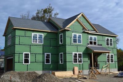 Framingham Single Family Home For Sale: Rachel Road