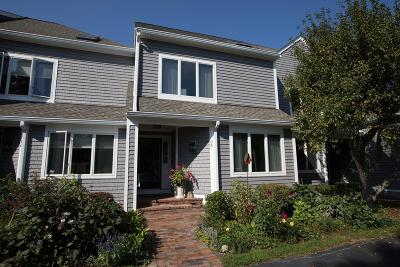 Scituate Condo/Townhouse For Sale: 40 Driftway #35