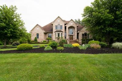 Swansea Single Family Home For Sale: 48 Laurie Lane