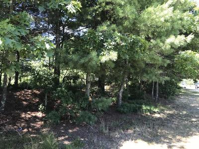 Carver Residential Lots & Land For Sale: 66 N Main St