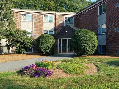 Framingham Condo/Townhouse For Sale: 15 Weld St. #55