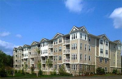 Reading Condo/Townhouse For Sale: 75 Augustus #3008