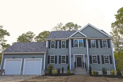 Attleboro Single Family Home New: 222 Steere Street