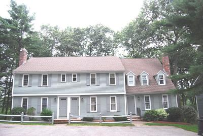 chelmsford Rental New: 211 Wellman Ave #211
