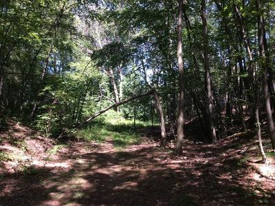 Hudson Residential Lots & Land For Sale: Indian Lake Shore Drive