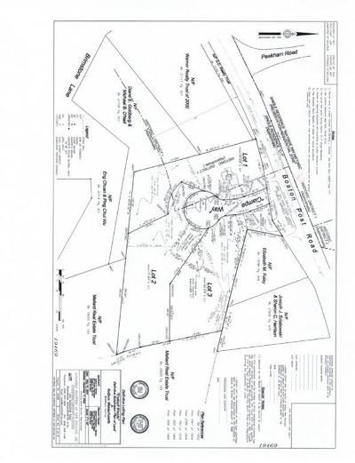 Sudbury MA Single Family Home For Sale: $1,199,500