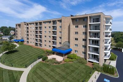 Weymouth Condo/Townhouse For Sale: 64 Broad Reach #510
