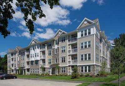 Weymouth Condo/Townhouse Under Agreement: 110 Trotter Road #106