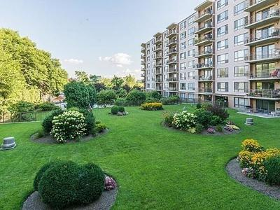 Watertown Condo/Townhouse For Sale: 125 Coolidge Ave #704