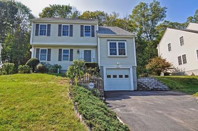 Framingham Single Family Home For Sale: 183 Arthur Street