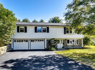 Framingham Single Family Home For Sale: 59 Angelica Drive