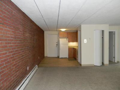Cambridge Condo/Townhouse For Sale: 47 Homer Ave #24