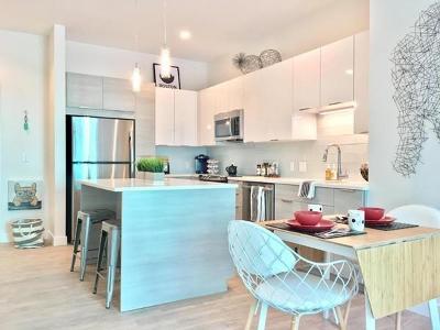 Somerville Rental : 449 Canal Street #318