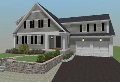 Holliston Single Family Home For Sale: 41 Pleasant St