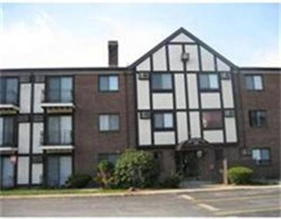 Randolph Condo/Townhouse For Sale: 59 Highland Glen Dr #306