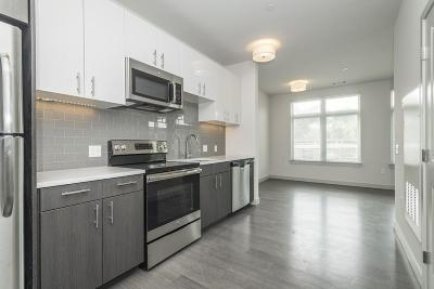 Condo/Townhouse For Sale: 99 Tremont St. #205