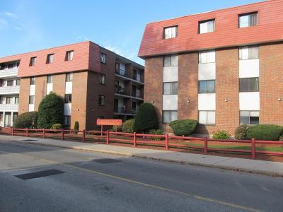 Malden Condo/Townhouse For Sale: 131 Pierce St #105