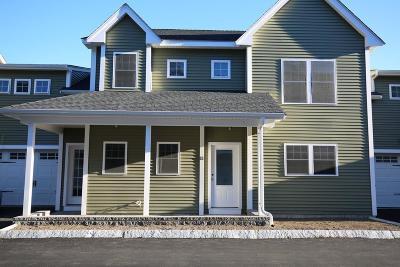 Braintree Condo/Townhouse For Sale: 205 Elm Street #11