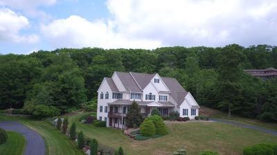Belchertown Single Family Home For Sale: 53 Spring Hill Road