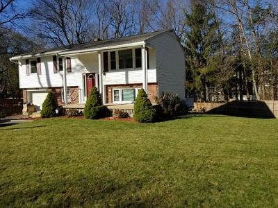 Hudson Single Family Home For Sale: 87 Brigham St.