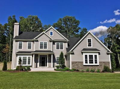 Rehoboth Single Family Home For Sale: Lake Street