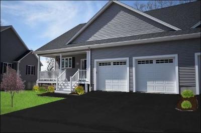 Bellingham Condo/Townhouse For Sale: 413 Village Lane #413