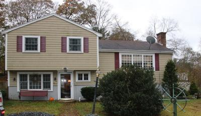 Milton Single Family Home For Sale: 101 Neponset Valley Pkwy