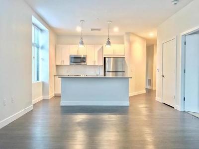 Somerville Rental For Rent: 449 Canal Street #213