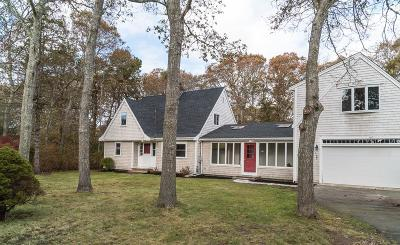 Falmouth Single Family Home For Sale: 40 Terry Lou Ave