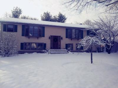 Attleboro Single Family Home For Sale: 21 Simpson Ave