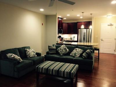 Burlington Rental For Rent: 245 Cambridge Street #107