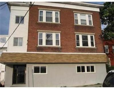 Multi Family Home New: 8 Nichols St