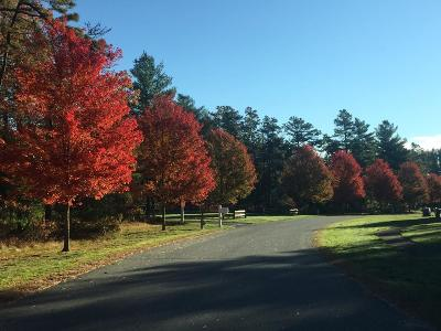 Wareham Residential Lots & Land For Sale: 5 Red Pine Ln