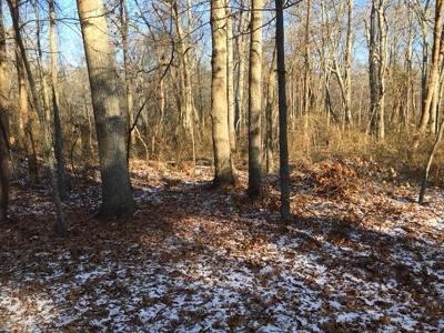 Marshfield Residential Lots & Land For Sale: Careswell Street