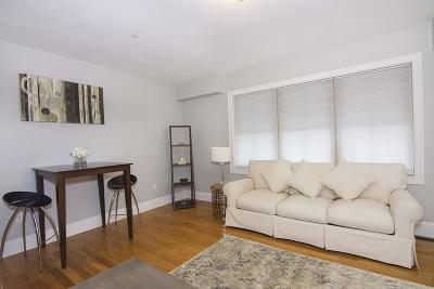 Somerville Condo/Townhouse For Sale: 24b Weston Ave. #24B
