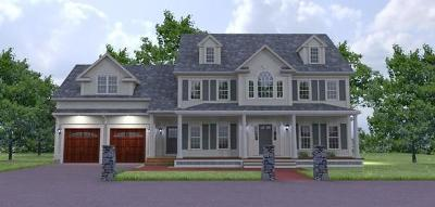 Canton Single Family Home For Sale: 55 Saddleback Lane #(lot 10)