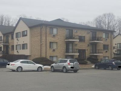 Lowell Condo/Townhouse New: 309 Pawtucket Blvd #26