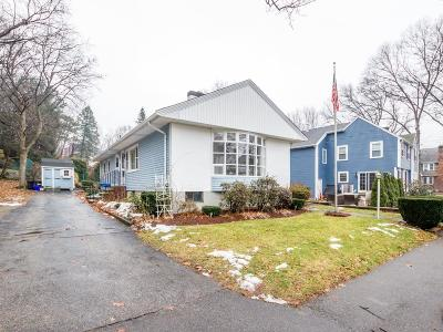 Quincy Single Family Home Contingent: 22 Theresa Rd