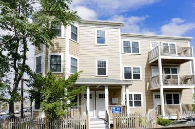 Somerville Rental For Rent: 11-13 Roberts St #3