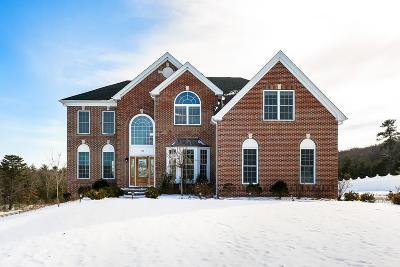 Holliston Single Family Home For Sale: 109 Mohawk Path