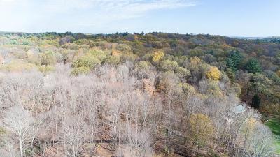 Southborough MA Single Family Home For Sale: $1,350,000