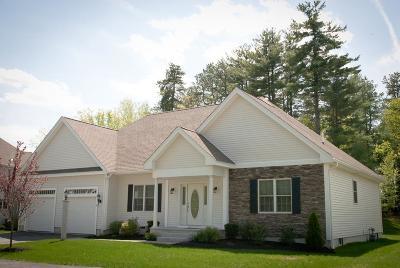 Methuen Condo/Townhouse For Sale: 30 Stone Castle Drive #18