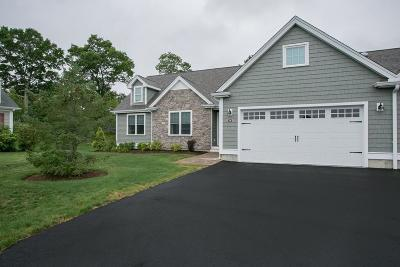 Lakeville Single Family Home For Sale: Lot 69 Hybrid Drive